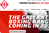 Gallant Sports eBay Shop